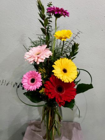 Colorful Daisies Flower Arrangement