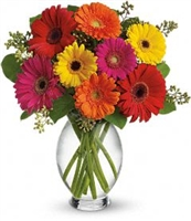 Colorful Gerbera Vase Bouquet