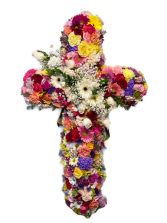 Colorful Mixed Cross Sympathy