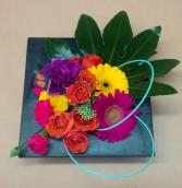 Colorful pavee Pavee Arrangement