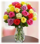 Colorful Premium Roses chose 12, 18, 24