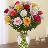 Colorful roses in vase
