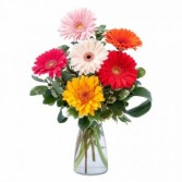 Colorful! Fresh Flower Arrangement