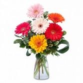 Colorful! Fresh Flower Arrangement