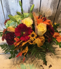colorfull fall assorted seasonal