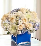 Colors of Love Blue Best DC Florist
