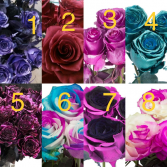 Pick a Number for Half or Full Dozen Metallic:   1. Blue 2. Red 3. Pink 4. Teal 5. Purple  Dyed:   6. Blue/Pink 7. Pink/Black 8. Pink/White