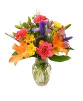 Colors of the Rainbow vased arrangement
