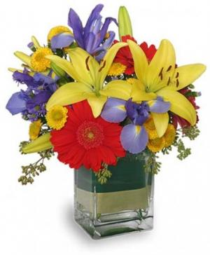 COLORS ON PARADE Flower Arrangement in Fitchburg, MA | CAULEY'S FLORIST & GARDEN CENTER