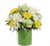 Colour your day with Beauty - 147 Arrangement
