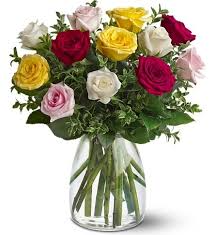 Colourful Love Roses