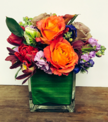 Colourful Spring Cube Arrangement
