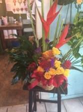 combo garden,s  plant/floral arrang.