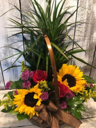 combo  planter/flowers seasonal fresh