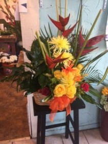 combo plant/floral seasonal mixture