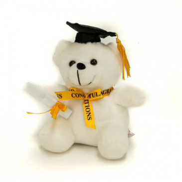 "Congratulations  Bear. (6"")"