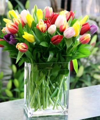Contempo Tulips Arrangement