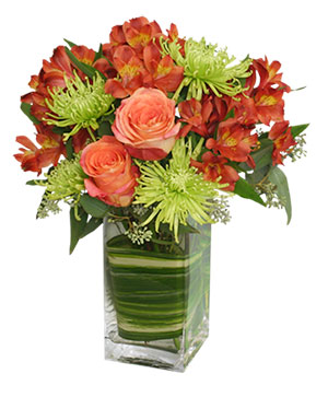 CONTEMPORARY AUTUMN Flowers in Biloxi, MS | Rose's Florist