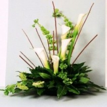 Contemporary Calla Lilys  by Enchanted Florist
