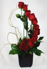 Contemporary Dozen Red Roses