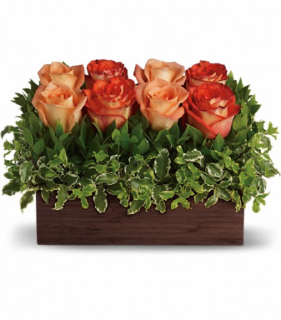 Contemporary Hedge design Rose bouquet
