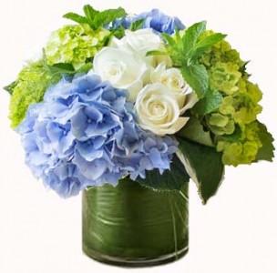 Cool Breezes Fresh Flowers