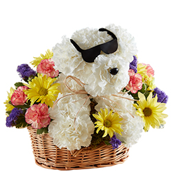 Cool Pup™ Basket Arrangement