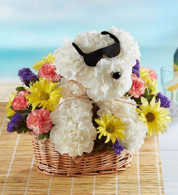 Cool Pup Bouquet