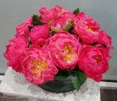 Fabulous Coral Peonies  Cut Floral Arrangement