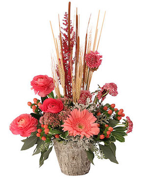 Coral Comforts Floral Arrangement in Arcade, NY | Always and Forever Flowers