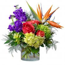Coral Sunrise Arrangement