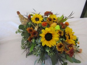 CORNUCOPIA OF FLOWERS  in Davis, CA   STRELITZIA FLOWER CO.