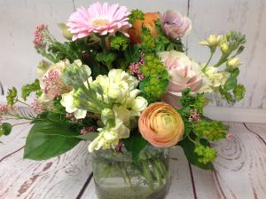 Cotton Candy  in Easton, CT | Felicia's Fleurs