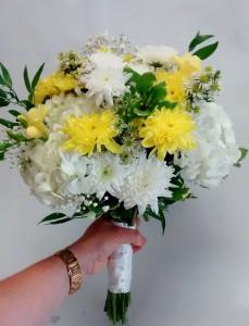 country bride hydrangeas, daisies