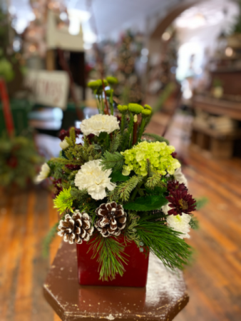 Country Christmas  Fresh container arrangement