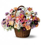Country Days                     TF7-2 basket arrangement
