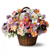 Country Days                     TF7-2 basket arrangement