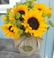 Country Fields Yellow Sunflowers