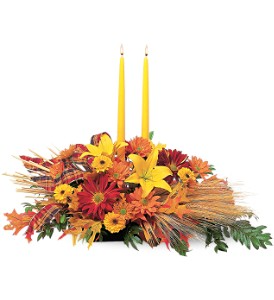 Country Harvest                          TF75-1 Fresh candle arrangement  in Elkton, MD | FAIR HILL FLORIST