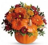 Country Pumpkin arrrangement