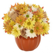 Country Pumpkin Daisy Delight Arrangement