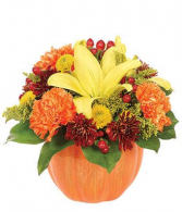 country pumpkin fall flowers in terracotta pumpkin