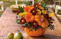 Country Pumpkin fresh flowers
