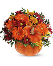Country Pumpkin fresh flowers