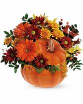 Country Pumpkin T175-1 13.5