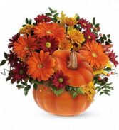 Country Pumpkin T175-1B