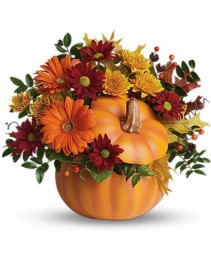 Country Pumpkin Teleflora's