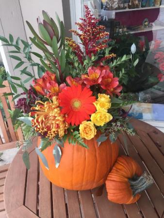 Countryside pumpkin
