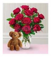 Cozy Dozen Roses
