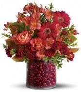 Cranberry Surprise H09J165B